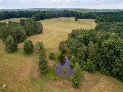 Gorgeous 182 Acre Farm : Cypress Inn : Wayne County : Tennessee