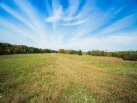 Gorgeous 182 Acre Retreat : Cypress Inn : Wayne County : Tennessee