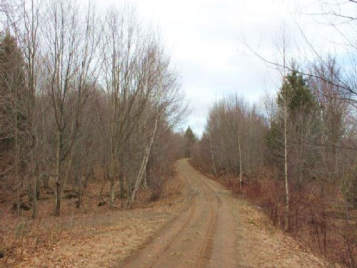 Land Near Fish Creek Reservoir : Annsville : Oneida County : New York