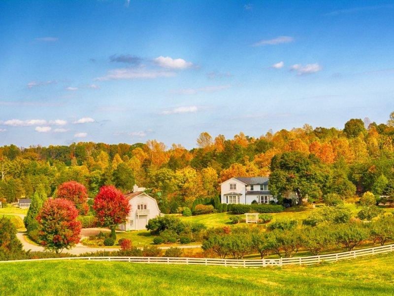 Rapidan River Farm 2 : Barboursville : Greene County : Virginia