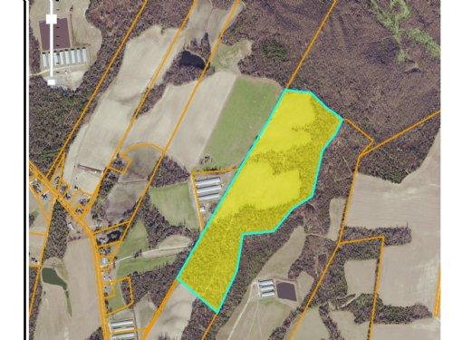 68 Acre Farm : Kenansville : Duplin County : North Carolina