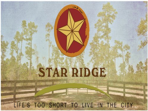 11.81 Acres Star Ridge : Livingston : Polk County : Texas