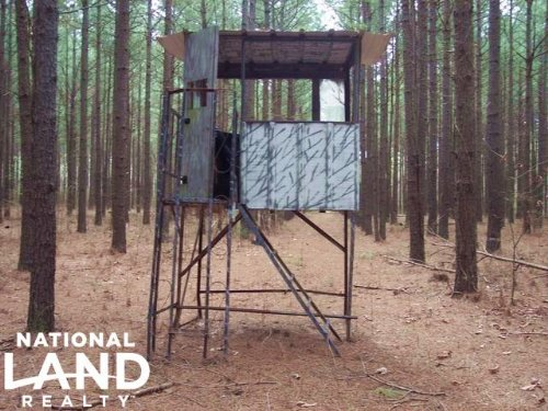 207 Acres Hunting And Timberland : Augusta : Woodruff County : Arkansas