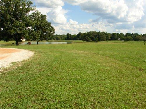 Scenic 43.5 Acres : Mathews : Montgomery County : Alabama