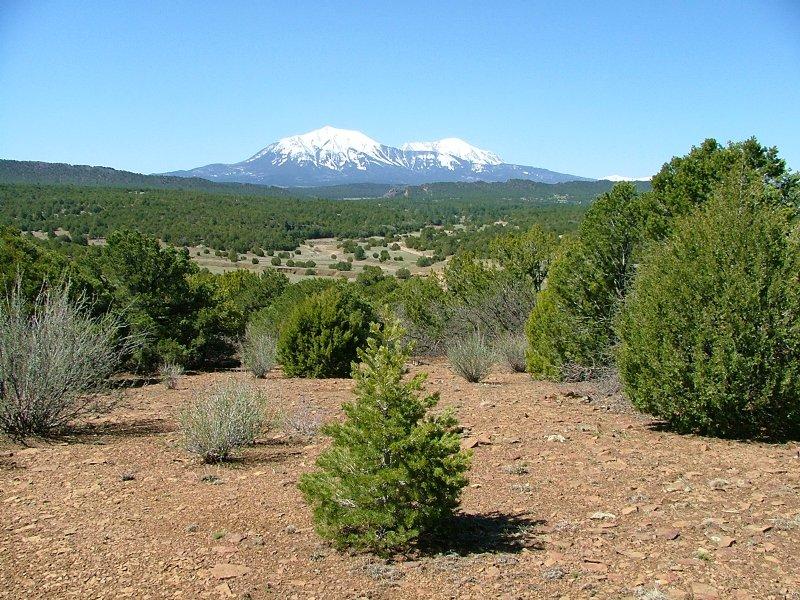 141a Silver Spurs Ranch : Walsenburg : Huerfano County : Colorado
