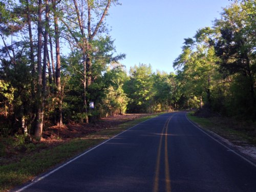 Mulberry Road 40 Tract : St. George : Dorchester County : South Carolina