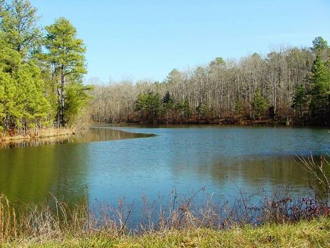 Belfast Plantation - 4664.41 Acres : Newberry : Newberry County : South Carolina