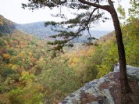 Gulf Creek Canyon Preserve : Steele : Saint Clair County : Alabama