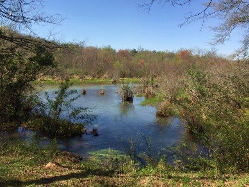 Curry Creek Farm : Jefferson : Jackson County : Georgia