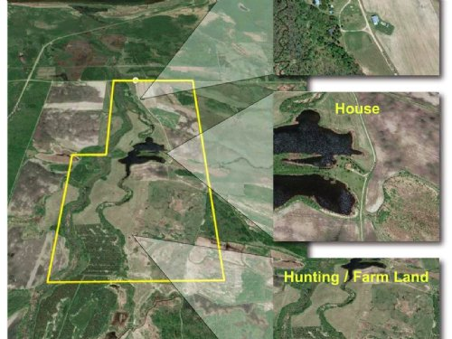 Eagle Forest Acres : Blackduck : Beltrami County : Minnesota