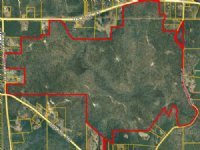 Duck Hunter's Paradise : Barnesville : Lamar County : Georgia