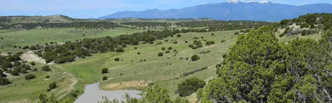 Meadowbrook Ranch