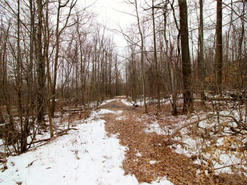 26+/- Acres Of Land In Northumberla : Northumberland : Pennsylvania