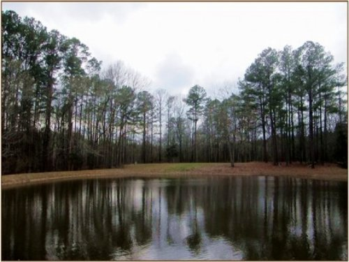 25.5 Acres In Hinds County : Terry : Hinds County : Mississippi