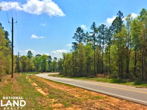 The Grand Bay Wilmer Road Tract : Wilmer : Mobile County : Alabama