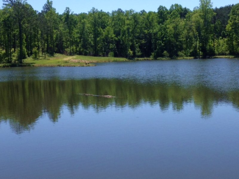 Indian Hills Farm 342acres Land For Sale Saco Pike