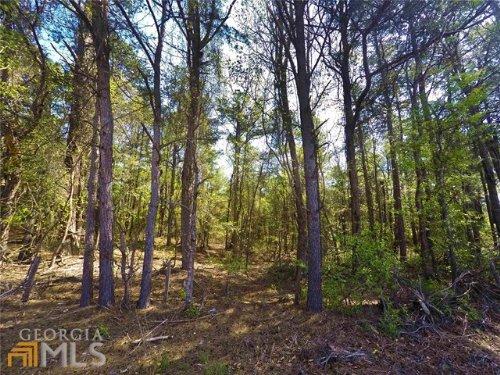 Beautiful Wooded Acreage In Coveted : Monroe : Walton County : Georgia