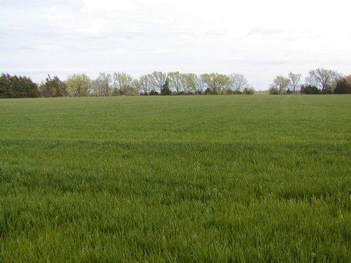 48 +/- Acres : Mount Hope : Sedgwick County : Kansas