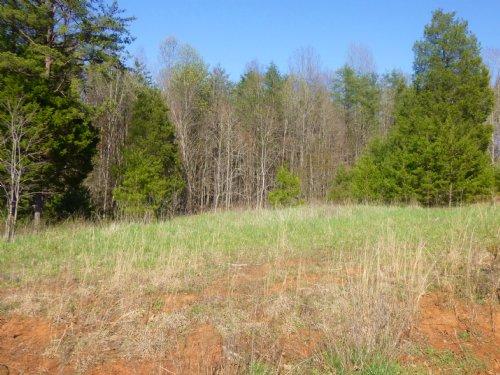Holly Tree Drive : Pamplin : Prince Edward County : Virginia
