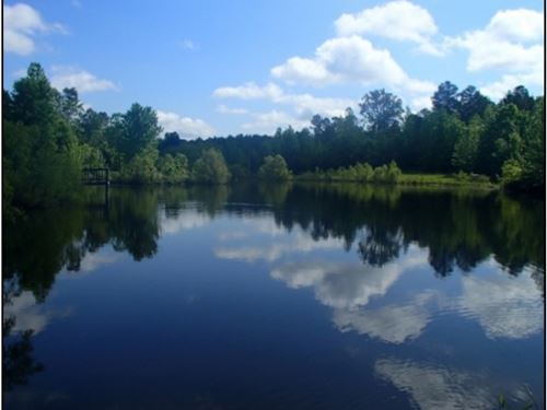 215 Acres In Carroll County : Black Hawk : Carroll County : Mississippi