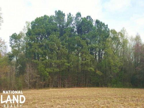 Private Agricultural Estate : Atkinson : Pender County : North Carolina