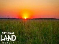 Farmground For Sale - Kit Carson, : Kit Carson : Cheyenne County : Colorado