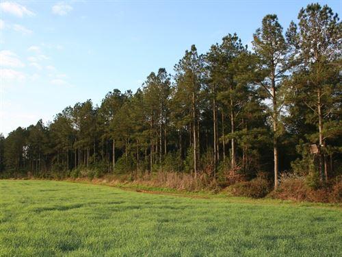The King Farm : Cochran : Bleckley County : Georgia