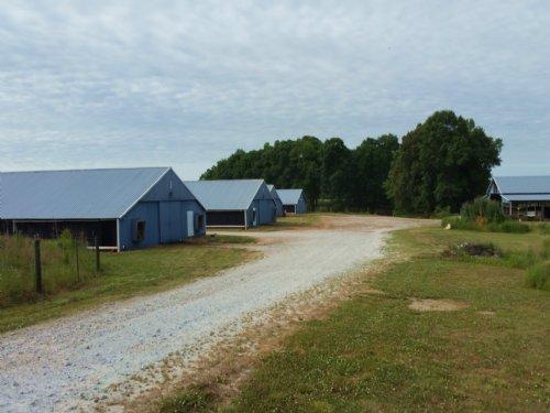 Six House Broiler Farm In Randolph : Graham : Randolph County : Alabama