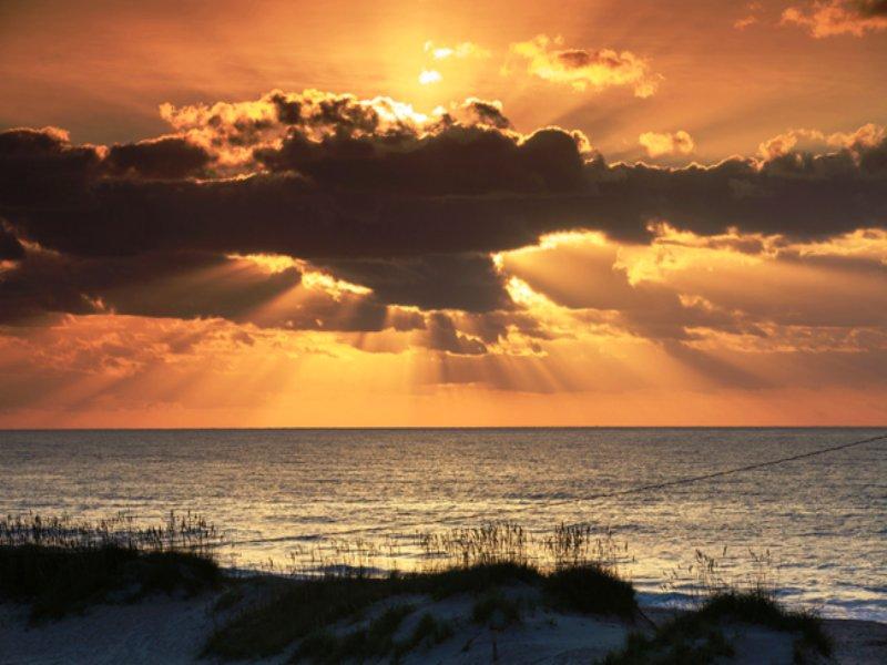 Dock-able Coastal Waterfront Estate : Oriental : Pamlico County : North Carolina