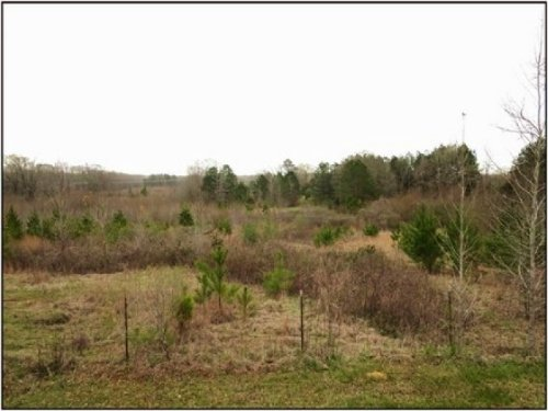 48.4 Acres In Hinds : Raymond : Hinds County : Mississippi
