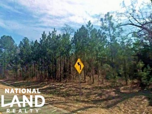 Oconee Riverfront Hunting Tract : Glenwood : Wheeler County : Georgia
