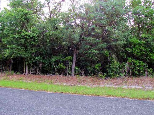 Nice 4.94 Acre Lot 771683 : Chiefland : Levy County : Florida