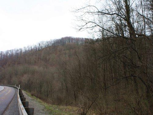 71 Acres M/l, Vacant Acreage : Duck : Braxton County : West Virginia