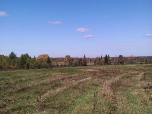 Land Bordering State Forest 16 Acre : Norway : Herkimer County : New York