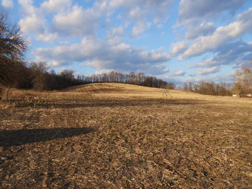 North River Rd - 40 Acres : Dresden : Muskingum County : Ohio