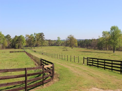 K Bar Ranch : Cairo : Grady County : Georgia