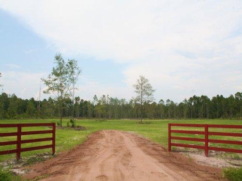 5.92 Acres- Randy Rd : Yulee : Nassau County : Florida