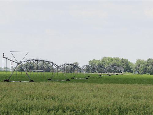 Bradley Farm : Henry : Sioux County : Nebraska