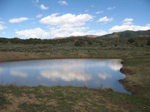 Pinon Hills Ranch - Parcels 44 &Amp : Pagosa Springs : Archuleta County : Colorado