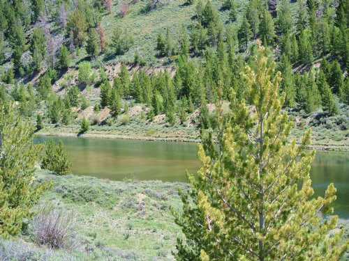 Sheldon Gulch : Atlantic City : Fremont County : Wyoming