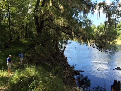 Ace Ranch On The Suwannee River : Mayo : Lafayette County : Florida