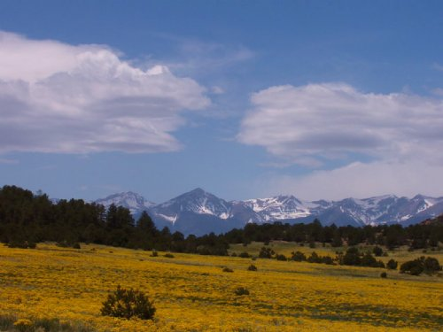 Mountain Paradise In Westcliffe : Westcliffe : Custer County : Colorado