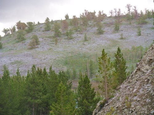 National Forest Out-Lot : Atlantic City : Fremont County : Wyoming
