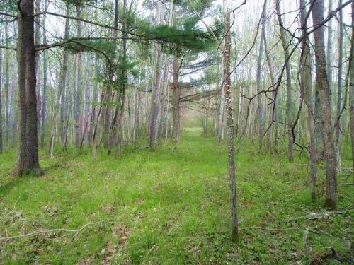 Tomahawk River Property : Minocqua : Oneida County : Wisconsin