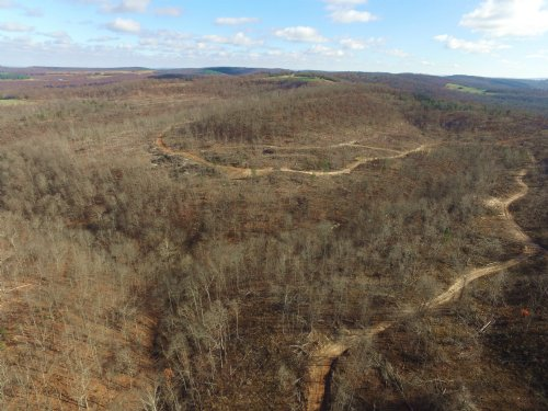 Reduced 358+/- Acres : Georgetown : Madison County : Arkansas