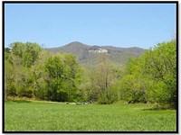 Table Rock Road Farm : Pickens : Pickens County : South Carolina