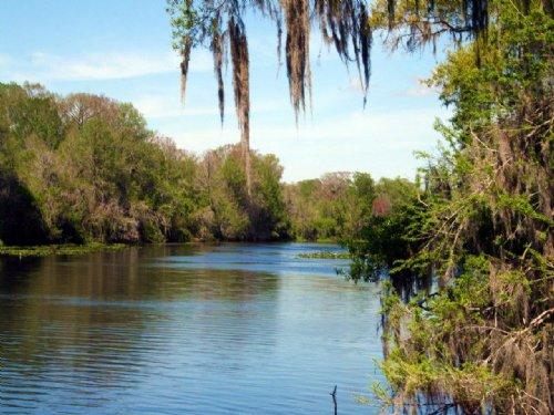 Withlacoochee Development : Bushnell : Sumter County : Florida