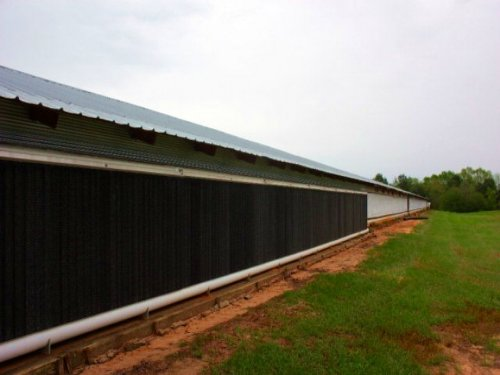 Broiler House And Land For Sale Miz : Mize : Simpson County : Mississippi