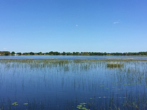 316.88 Ac Lake-Front Grove : Clermont : Lake County : Florida