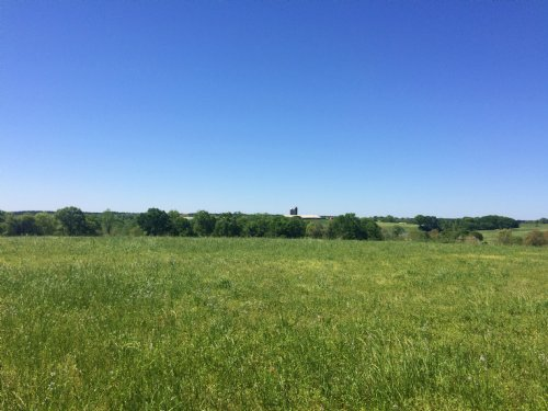 50 Ac With Hayfield & Hardwoods : Troy : Pike County : Alabama